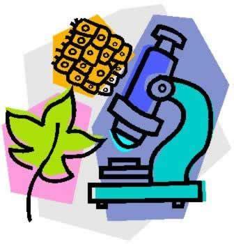 Scientific research on human nature development
